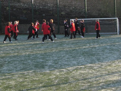 Astroturf in Frost 001